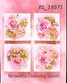 Interlitho-Alberto, FLOWERS, BLUMEN, FLORES, photos+++++,pink roses,KL16571,#f#, EVERYDAY ,rose,roses ,napkin,napkins,