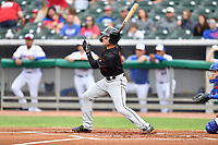 Birmingham Barons right fielder Luis Gonzalez (8) swings at a pitch during a game against the Tennessee Smokies at Smokies Stadium on May 15, 2019 in Kodak, Tennessee. The Smokies defeated the Barons 7-3. (Tony Farlow/Four Seam Images)