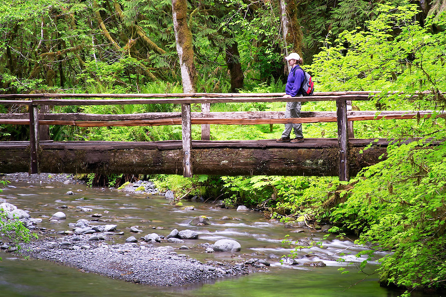 Woman hiking on wooden bridge over Barnes Creek, Olympic National Park, Olympic Peninsula, Clallam County, Washington, USA