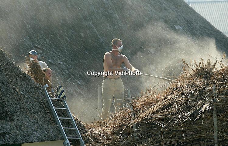 Foto: VidiPhoto..HETEREN - Personeel van Rietdekkersbedrijf Jansen uit Slijk-Ewijk trotseert de brandende zon en het stof van tientallen jaren. De mannen vernieuwen het versleten rieten dak van een oude T-boerderij langs de Rijndijk. De wachttijd voor het vernieuwen van een rieten dak bedraagt op dit moment zo'n anderhalf jaar. Volgens Jansen is er een enorm personeelstekort en neemt de vraag .flink toe. Steeds meer particulieren ontdekken de voordelen .(goede isolatie) van riet boven pannen.