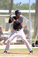 Miami Marlins outfielder Christian Capellan #73 at bat during an intramural game on September 30, 2014 at Roger Dean Complex in Jupiter, Florida.  (Stacy Jo Grant/Four Seam Images)