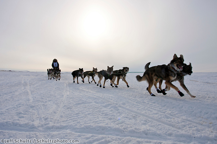 Rookie Dave DeCaro on the Bering Sea just prior to arriving in Nome during the 2010 Iditarod