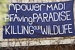 Protestors who are trying to save  Thrupp lake, part of the Radley lakes have occupied Sandles house on the site.<br />