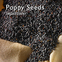 Poppy Seed Pictures | Poppy Seed Photos Images & Fotos