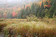 Wetlands area along Route 113 during the autumn months in the White Mountains of Maine USA.