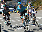 Rafal Majka (POL) Bora-Hansgrohe, Miguel Angel Lopez Moreno (COL) Astana and Tadej Pogacar (SLO) UAE Team Emirates on the final climb of Stage 15 of La Vuelta 2019  running 154.4km from Tineo to Santuario del Acebo, Spain. 8th September 2019.<br /> Picture: Karlis | Cyclefile<br /> <br /> All photos usage must carry mandatory copyright credit (© Cyclefile | Karlis)