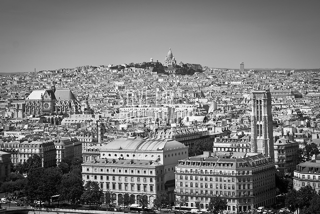 Paris as seen from Notre Dame with Sacre Coeur in the background, Paris, France