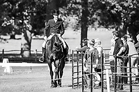 BRA-Marcelo Tosi (ELEDA ALL BLACK) INTERIM-=44TH: CICO3* DRESSAGE: 2014 GBR-Houghton International Horse Trail (Friday 23 May) CREDIT: Libby Law COPYRIGHT: LIBBY LAW PHOTOGRAPHY - NZL