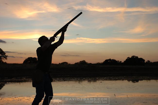 DOVE HUNTING ..mourning dove hunt near Pleasanton Tx..Jim Wheeler, Gus Wheeler, Ken Geiger