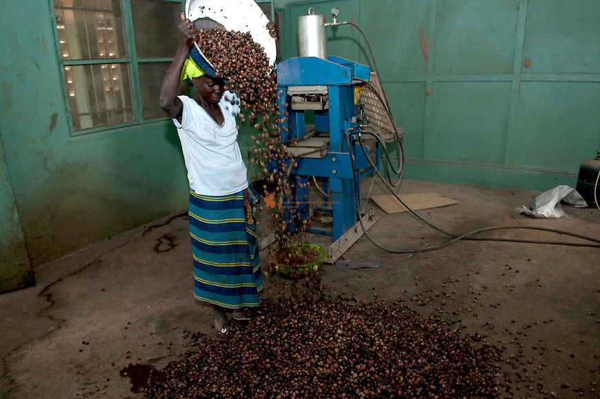 Woman processing shea nuts into butter