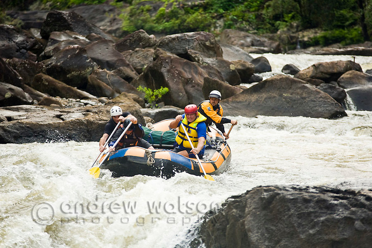 White water rafting on the North Johnstone River, Wooroonoonan National Park, Queensland, Australia