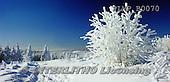 Marek, CHRISTMAS LANDSCAPES, WEIHNACHTEN WINTERLANDSCHAFTEN, NAVIDAD PAISAJES DE INVIERNO, photos+++++,PLMPB0070,#xl#