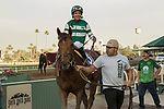 ARCADIA, CA   FEBRUARY 3 : #3 Accelerate, ridden by Victor Espinoza, in the winners circle after winning the San Pasqual Stakes (Grade ll) on February 3, 2018 at Santa Anita Park in Arcadia, CA.(Photo by Casey Phillips/ Eclipse Sortswire/ Getty Images)