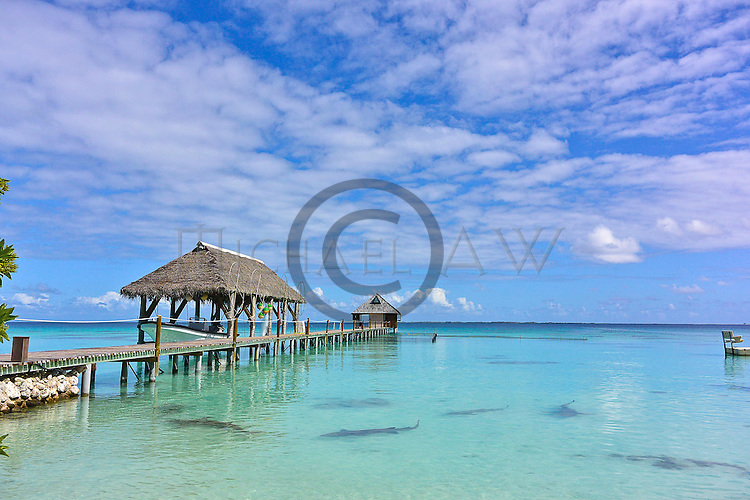 French Polynesia; Fakarava South Passage,