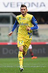 French Cyril Thereau in action during the Serie A football match Chievo Verona vs AC Milan at Verona, on November 10, 2013.