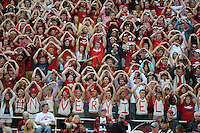 STAFF PHOTO ANTHONY REYES &bull; @NWATONYR<br /> Fans cheer for the Razorbacks against Nicholls State in the first quarter Saturday, Sept. 6, 2014 at Razorback Stadium in Fayetteville.