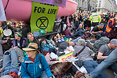 Extinction Rebellion, London 2019