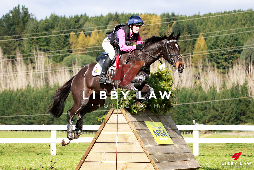 Emily Cammock rides Shaw Lee during the NRM CCI3* Championship Cross Country at the 2017 NZL-NRM National Three Day Event Championships. National Equestrian Center, Taupo. Saturday 13 May. Copyright Photo: Libby Law Photography