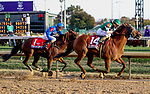November 3, 2018: Accelerate #14, ridden by Joel Rosario, wins the Breeders' Cup Classic on Breeders' Cup World Championship Saturday at Churchill Downs on November 3, 2018 in Louisville, Kentucky. Bill Denver /Eclipse Sportswire/CSM