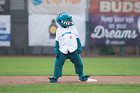 Ogden Raptors mascot Oggie between innings of a Pioneer League game against the Billings Mustangs at Lindquist Field on August 17, 2018 in Ogden, Utah. The Billings Mustangs defeated the Ogden Raptors by a score of 6-3. (Zachary Lucy/Four Seam Images)