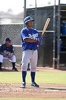 Luis Maza / Los Angeles Dodgers 2008 Instructional League..Photo by:  Bill Mitchell/Four Seam Images