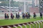Horses compete during the Race 5, Tim Mei Handicap, at the Sha Tin Racecourse on 03 September 2017 in Hong Kong, China. Photo by Marcio Rodrigo Machado / Power Sport Images