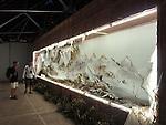 WHORLED EXPLORATIONS - Kochi Muziris Biennale 2014 - Xu Bing work.