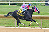 Time For Spring winning at Delaware Park on 9/21/15