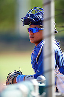 Los Angeles Dodgers minor league catcher Jose Capellan #65 during an instructional league game against the Chicago White Sox at the Camelback Training Complex on October 9, 2012 in Glendale, Arizona. (Mike Janes/Four Seam Images)