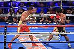 Manny paquiao derroto por decisión unánime a Jessie Vargas así coronándose campeón de las 147 libras de la OMB