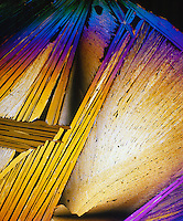 UREA CRYSTALS - H2NCONH3<br /> Product of protein metabolism; Tetragonal prisms; 100x mag. liquefied & recrystallized; polarized light.