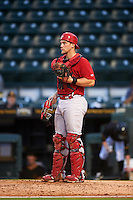 Palm Beach Cardinals catcher Steve Bean (11) during a game against the Bradenton Marauders on August 8, 2016 at McKechnie Field in Bradenton, Florida.  Bradenton defeated Palm Beach 5-4 in 11 innings.  (Mike Janes/Four Seam Images)