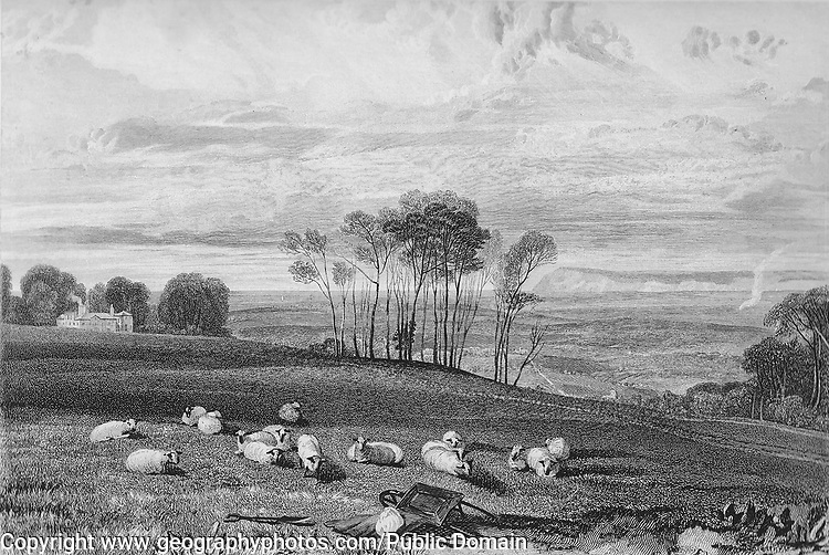 Nineteenth century engraving of Pevensey Bay, Sussex, England, UK artist J M W Turner