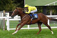 Winner of The Radcliffe & Co Novice Median Auction Stakes (Div 2) Percys Lad ridden by Charles Bishop and trained by Eve Johnson Houghton during Horse Racing at Salisbury Racecourse on 11th September 2020