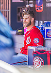 21 April 2013: Washington Nationals outfielder Bryce Harper sits in the dugout during a game against the New York Mets at Citi Field in Flushing, NY. The Mets shut out the visiting Nationals 2-0, taking the rubber match of their 3-game weekend series. Mandatory Credit: Ed Wolfstein Photo *** RAW (NEF) Image File Available ***