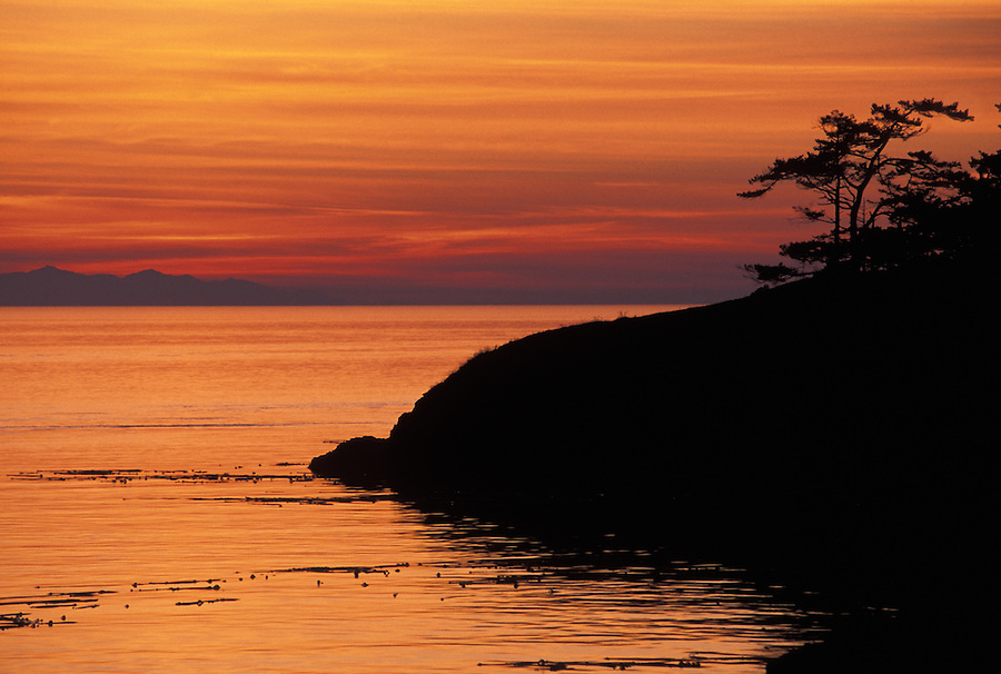 Coastal shoreline silhouetted against sunset with Olympic Mountains in background, Deception Pass State Park, Washington