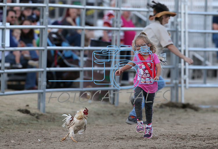 Images from the media day events at the 60th annual International Camel Races in Virginia City, Nev., on Friday, Sept. 6, 2019.<br /> Photo by Cathleen Allison/Nevada Momentum