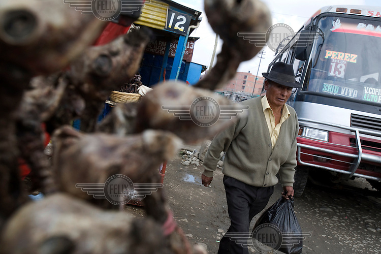 A man and bus go past dried llama foetuses for sale in a shop in El Alto. People buy these and take them to shamans or fortune tellers who burn the foetuses as an offering to Pachamama (Mother Earth).