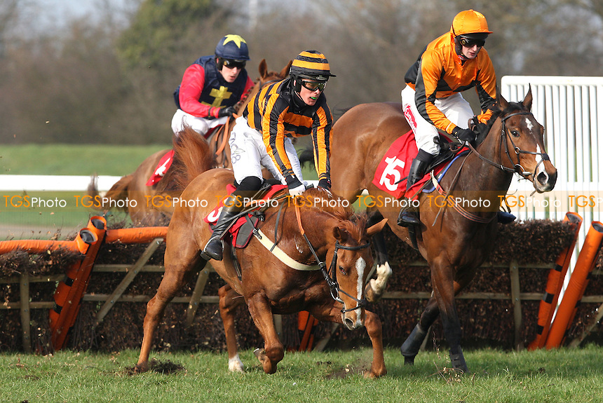 Generous Kenny ridden by Lee Edwards takes a fall - 14:20 32 Free At RedBet.com Maiden Hurdle (Class 4) - Horse Racing at Huntingdon Racecourse, Cambridgeshire - 14/03/12 - MANDATORY CREDIT: Rob Newell/TGSPHOTO - Self billing applies where appropriate - 0845 094 6026 - contact@tgsphoto.co.uk - NO UNPAID USE..