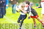 Corca Dhuibhne's Darragh Devane and Tralee Sharks Darragh Reen in action at O'Dowd park, Tralee on Saturday.