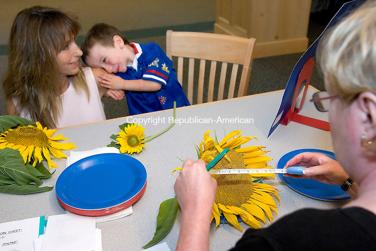 SOUTHBURY, CT-10 SEPTEMBER 2006-091006JS02-Dylan Kindle, 4, of Southbury rests his head on the shouler of his mother Kathy Kindle while Carol Shaw, president of the Southbury Garden Club measures the head of a sunflower Sunday at the Southbury Public Library. The garden club held judging for their annual sunflower contest.  -Jim Shannon Republican-American