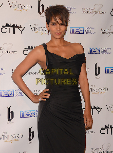 02 March 2014 - Beverly Hills, California - Halle Berry.  Fame and Philanthropy Post-Oscar Gala celebrating the 86th Annual Academy Awards held at The Vineyard Beverly Hills. <br /> CAP/ADM/BT<br /> &copy;Birdie Thompson/AdMedia/Capital Pictures