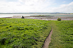 Path over filed to the coast, Holy Island, Lindisfarne, Northumberland, England, UK