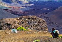 Photographer taking a photo of a silversword plant at Haleakala National park, Maui