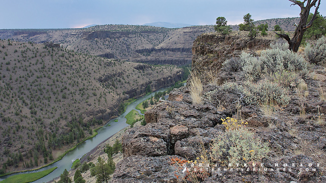 Wildflowers cling to the rimrock above Oregon's Crooked River as thunderstorms approach.