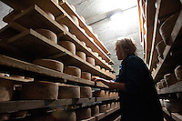 "Kelli Estrella stands amongst specialty cheeses in Cave #2 at the Estrella Family Creamery in Montesano,Wash. on November 4, 2010.  ""Help me out. Don't just try and kill me."" she says of her frustration in dealing with the the Food and Drug Administration.  The FDA ordered the Estrella Family Creamery in Montesano,Wash.  to stop processing cheeses after it found listeria bacteria on some of the cheeses this year.  The family says they have made many renovations on the farm and the bacteria is only found on the soft cheese, not everything.  They believe they should be allowed to resume making cheese and sell the hard cheeses they have already made at the facility.  The creamery is one of Washington's most famous artisan cheesemakers.  (photo credit Karen Ducey). ."