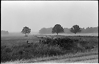 Farmland and Trees. On the Road somewhere in Ohio, heading west in 1973.