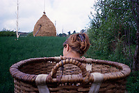 ROMANIA / Maramures / Valeni / July 2003..Maria Nemes, 20, heads into the fields above Valeni to make a haystack with her mother...© Davin Ellicson / Anzenberger