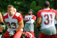 Jul 31, 2009; Flagstaff, AZ, USA; Arizona Cardinals wide receiver Anquan Boldin (center) watches from the sidelines during training camp on the campus of Northern Arizona University. Mandatory Credit: Mark J. Rebilas-