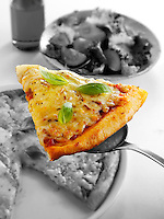 Italian Cheese Pizza slice photo. Funky Stock Pizzas slice